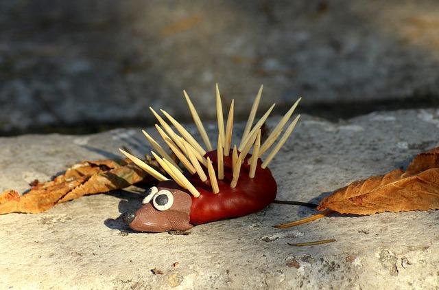 dekorační ježek